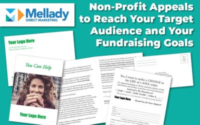 Non-Profit Appeals to Reach Your Target Audience and Your Fundraising Goals
